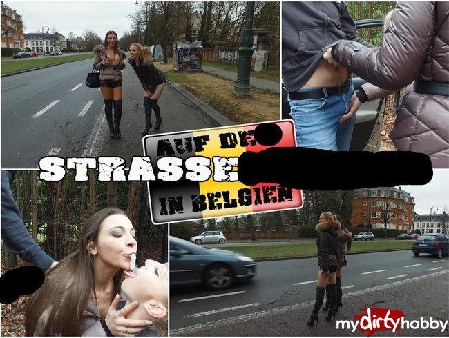 Auf der Straße in Belgien! Franz.Natur/Gesichtsbesamung