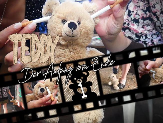 Teddy 1 - Der Anfang vom Ende